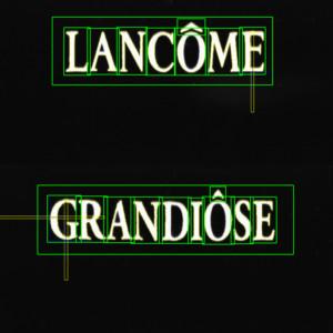 Contrôle logo LANCOME GRANDIOSE